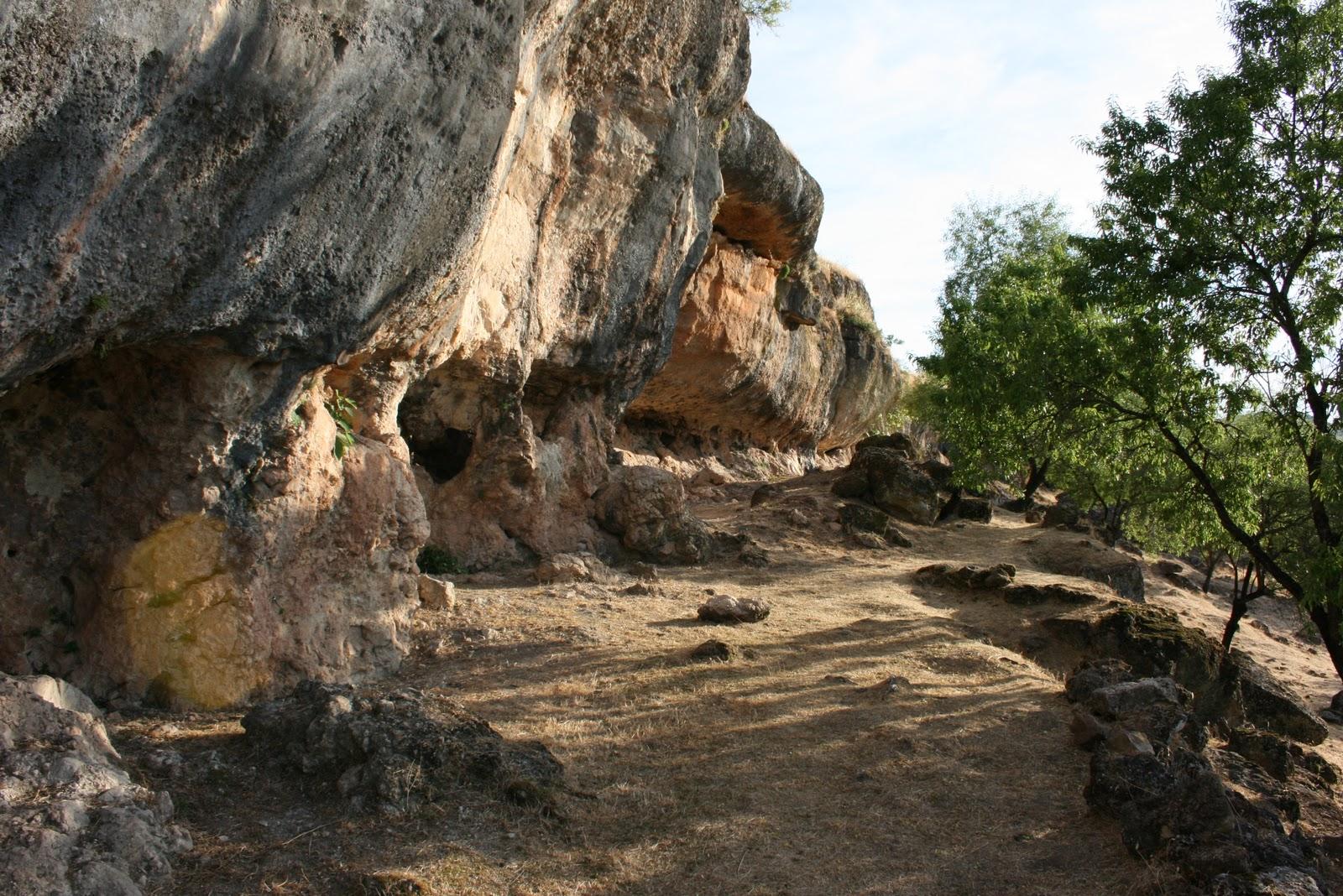 Cueva de la Lobera. Vista general